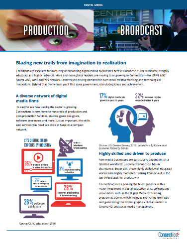 Digital Media Fact Sheet 2017