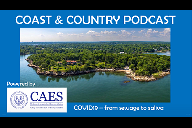 The background image for the Coast & Country podcast, an aerial photo of a coastline