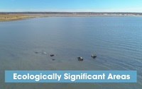 Link to Ecologically Significant Areas video