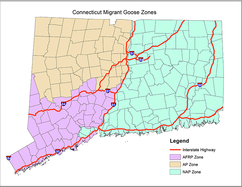 Map of Connecticut Migrant Goose Zones