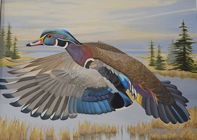 Painting of a male wood duck for the 2022 Connecticut Duck Stamp.