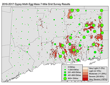 2016-2017 Gypsy Moth Egg Mass 7-Mile Grid Survey Results