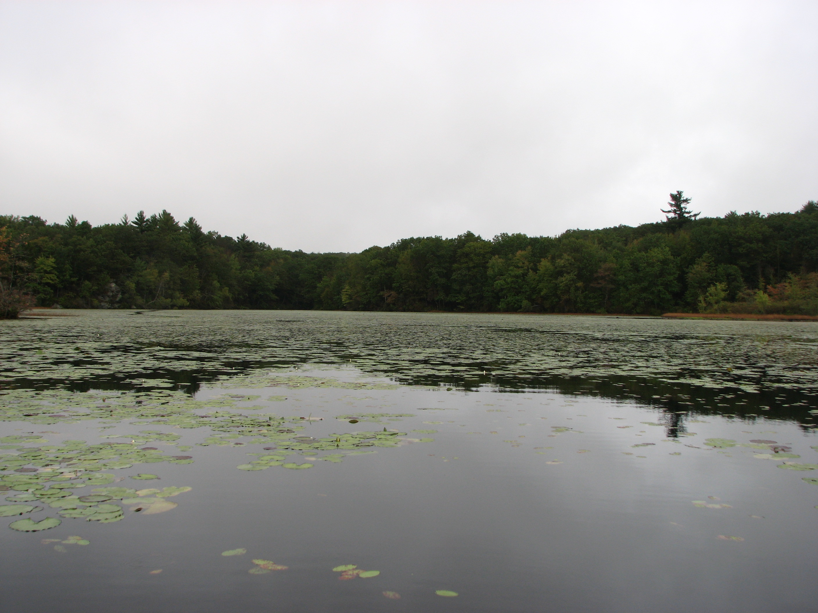 Bolton Notch Pond