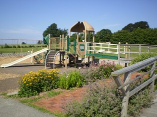 Accessible Playscape