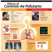 poster of Effects of Pollutants