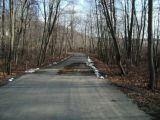 The access road to the Cedar Lake boat launch.