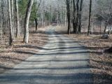 The access road to the Mohawk Pond boat launch.