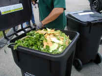 picture of a toter full of vegetable food scraps
