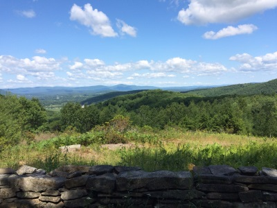 View at Housatonic State Forest