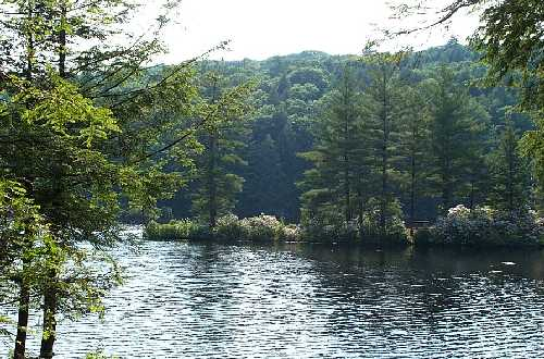 Bigelow Hollow State Park