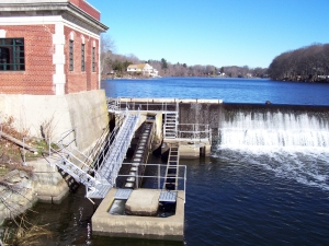 Fish Ladder - Mianus River, Greenwich