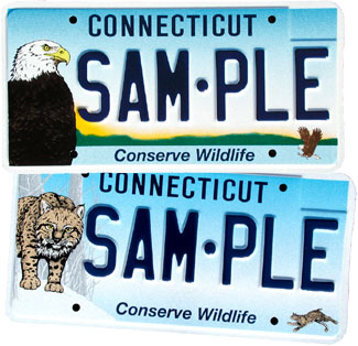 Bald Eagle and Bobcat License Plate Samples