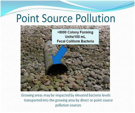 example of point source pollution