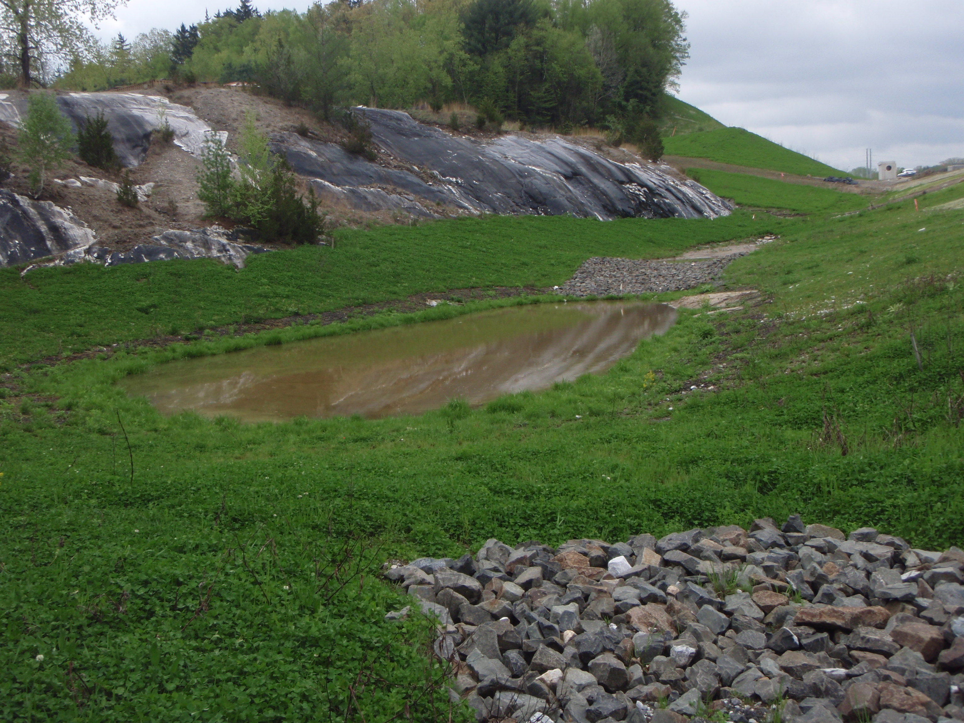 Stream Bank Erosion After