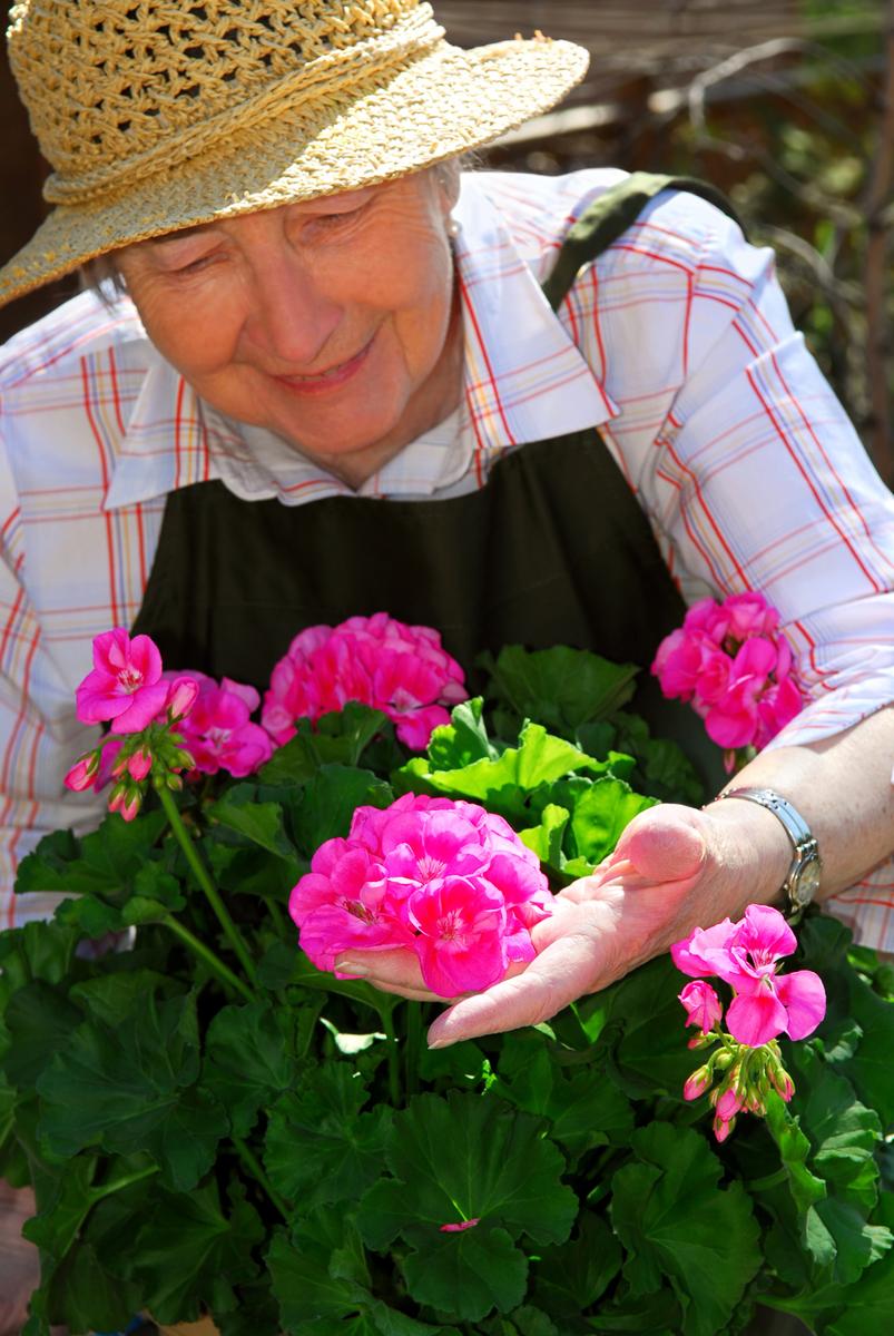 Elderly woman with sunhat tending to her flowers outside