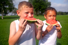http://www.ct.gov/dph/lib/dph/communications/stock-photo-46659214-summer-watermelon.jpg