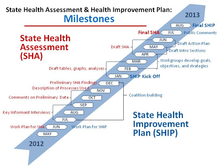 State Health Assessment Milestones