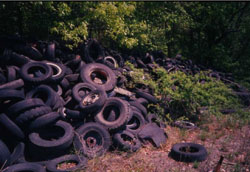Pile of tires.